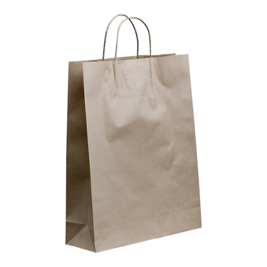 Kraft Paper Medium Boutique with handle x 250  480 x 340 + 110
