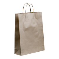 Brown Paper Medium Boutique with handle x 250  480 x 340 + 110